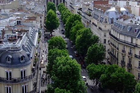 Paris là một trong những thành phố tại châu Âu có nhiều cây xanh đô thị nhất.