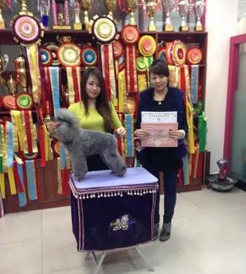 Nguyễn Thùy Linh (trái) tốt nghiệp khóa học chăm sóc làm đẹp chó, mèo tại Trung Quốc.