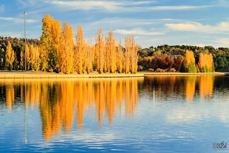 Tác phẩm The Autumn Reflection...