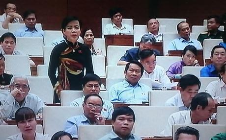 Đại biểu Nguyễn Kim Thúy