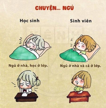 Học sinh ngủ ở nhà và học ở lớp, còn sinh viên thì ngủ ở cả hai nơi
