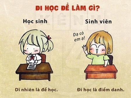 Học sinh đi học để có kiến thức đi thi, còn sinh viên đi học chỉ để giơ tay và hô có