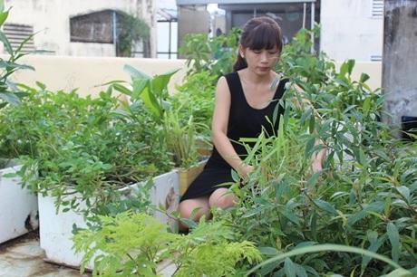Thủy Nguyên và một góc vườn của mình.
