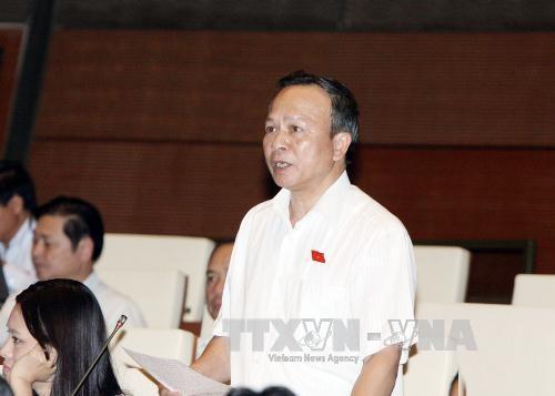 Đại biểu Quốc hội tỉnh Hải Dương Lê Đình Khanh phát biểu ý kiến.Ảnh: Nguyễn Dân/TTXVN