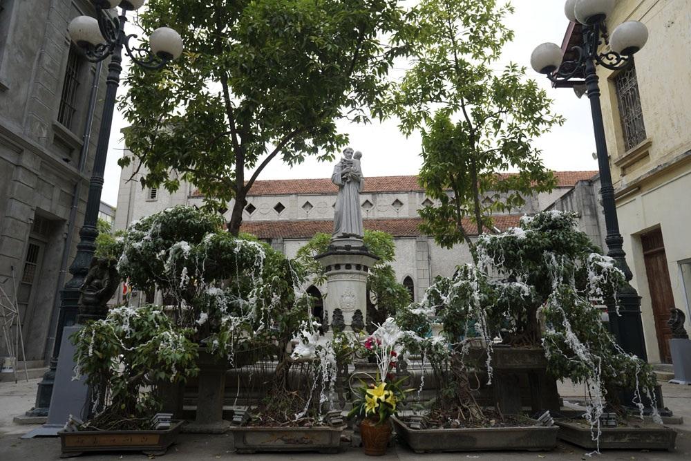 Những chậu cây cảnh được trang trí bông tuyết trắng tại nhà thờ Hàm Long.
