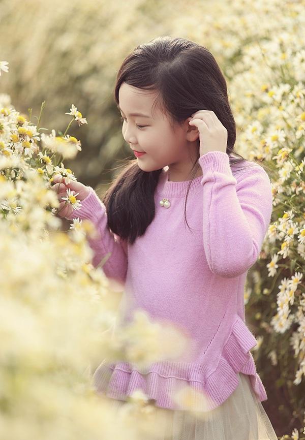 Năm nay, các vườn cúc họa mi ở Hà Nội, Bắc Ninh, Bắc Giang, Hưng Yên, Hải Phòng... đều được mùa. Người nông dân phấn khởi, còn người chơi hoa cũng không ngại chi tiền để được ghé thăm tận vườn.