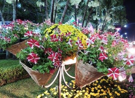 Các loài hoa cũng được trang trí với phong cách rất gần gũi, thân thuộc.
