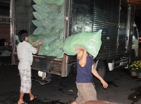 Dừa từ đầu mối đổ về lúc 1 giờ sáng, nhóm phụ việc tất tả xuyên đêm bốc xếp hàng.