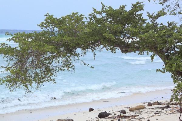 Đảo Gili Trawangan của Indonesia có dịch vụ rẻ nhất Đông Nam Á