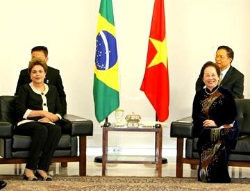 Phó Chủ tịch nước Nguyễn Thị Doan tiếp kiến Tổng thống Brazil
