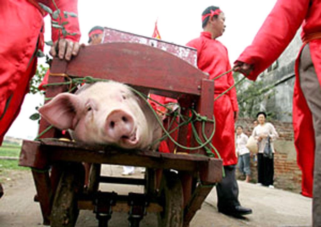 Lễ hội chém lợn ở Bắc Ninh (Ảnh: Việt Hưng)