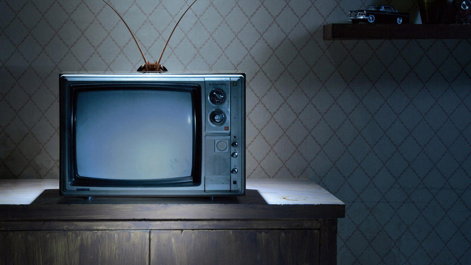 Truyền hình thực tế liệu có… thực tế? - Ảnh 6.