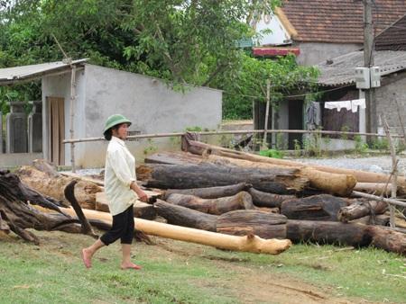 Mót gỗ giữa dòng thủy thần  - 16