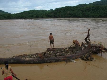 Mót gỗ giữa dòng thủy thần  - 6