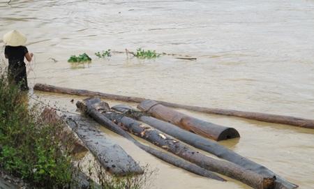 Mót gỗ giữa dòng thủy thần  - 8