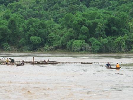 Mót gỗ giữa dòng thủy thần  - 3