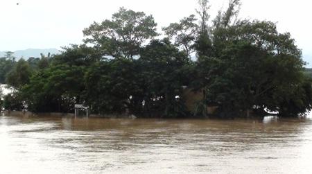 Nước sông Lam dâng cao, hàng trăm hộ dân ngập lụt  - 3