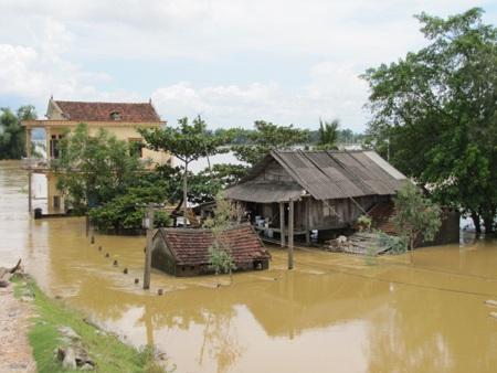 Nhiều hộ dân ở Hưng Nguyên chìm trong biển nước cứ mỗi khi nước sông Lam dâng lên.