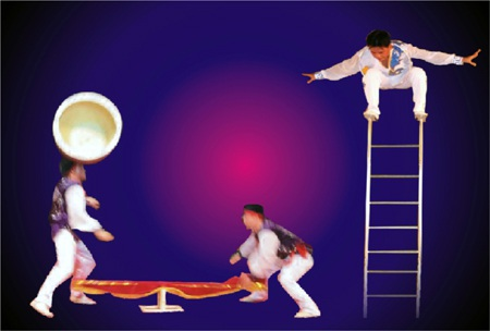 Tung hứng chậu hoa nghệ thuật thăng bằng