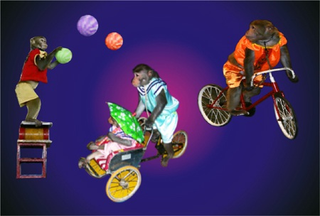 Khỉ đi xe đạp