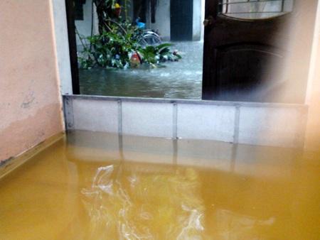 Nhưng không thể ngăn được dòng nước dâng cao tràn vào...