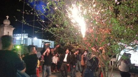 ...hát múa, nhảy quanh cây đào để mừng năm mới... (ảnh: Nguyễn Duy)