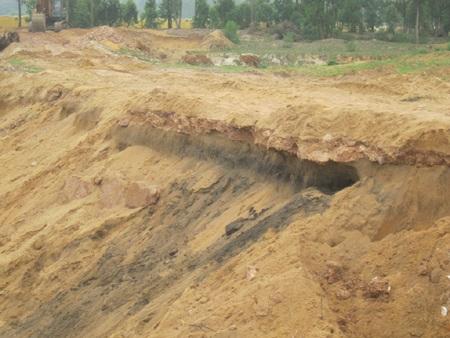 Khu vực phát hiện bộ xương cá còn lại một lớp cát màu đen mịn.