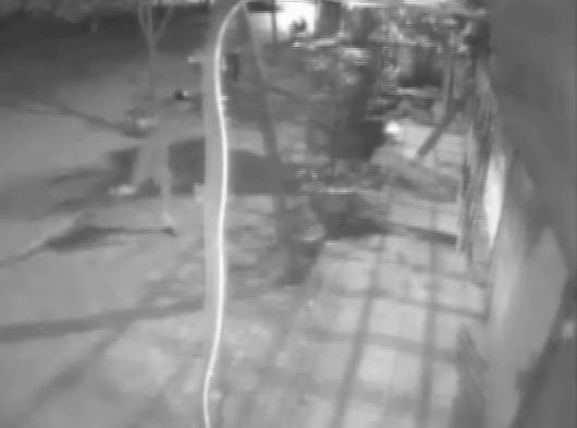 Camera an ninh ghi lại hình ảnh 2 thanh niên ném phân vào cửa nhà bà Lý
