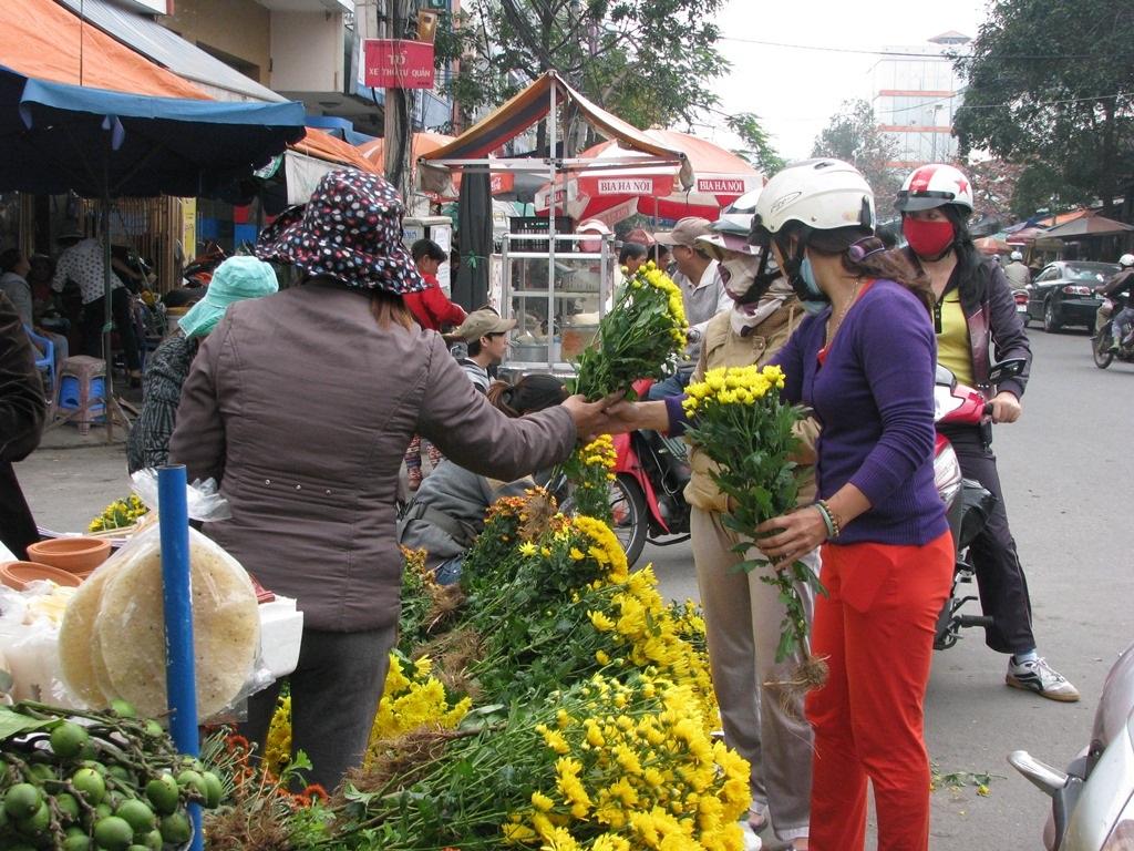 Hoa cúc có giá 7.000 - 10. 000 đồng/cây