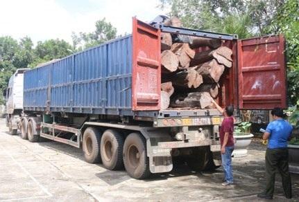 Xe container chở theo 17m3 gỗ căm xe bị tạm giữ (ảnh CTV)
