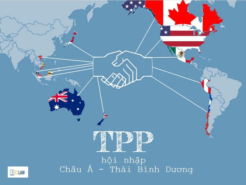 Vào TPP: Điện, xăng dầu, vận tải...chịu áp lực cải cách mạnh nhất - 1