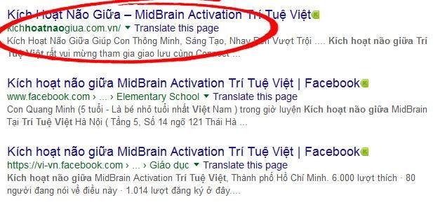 Trong 3 địa chỉ đăng tải trên mạng của Trung tâm Trí tuệ Việt, hiện chỉ còn website đầu tiên (khoanh đỏ) còn hoạt động.