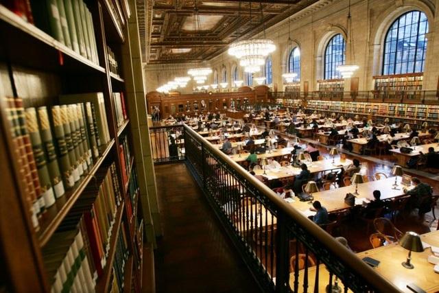 Harvard có thật sự bị thổi phồng?