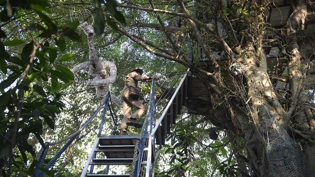 Quần thể nhà cây của nghệ sĩ Đào Anh Khánh bao gồm 6 ngôi nhà được xây dựng theo lối kiến trúc độc đáo giống như những tổ chim treo mình trên những cành cây. Trong đó, ngôi nhà rộng nhất có diện tích là 36 m2, nhỏ nhất là 10 m2. (Ảnh: Mạnh Thắng)