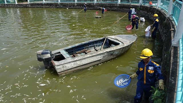 Đầu tháng 10 vừa qua, Hồ Tây bị chết 200 tấn cá (Ảnh: Mạnh Thắng)