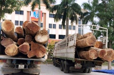 Hai phương tiện được đưa về trụ sở Trạm CSGT, Phòng CSGT, Công an Thanh Hóa.