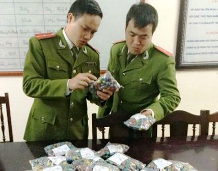 Lực lượng Công an kiểm tra pháo lậu.
