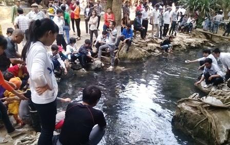 Thời gian qua, Khu du lịch suối cá Cẩm Lương thu hút ngày càng đông du khách đến thăm quan.