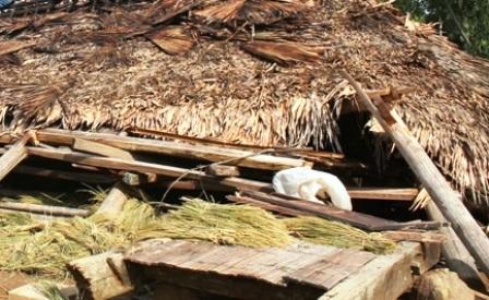 Hàng trăm ngôi nhà bị sập, tốc mái.