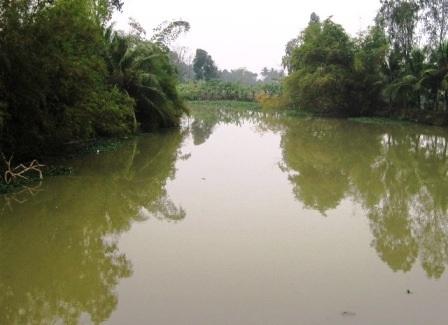 Sông Trà đoạn qua cầu Sài nơi có nhiều Phi trước kia được bắt để dâng lên tiến vua.