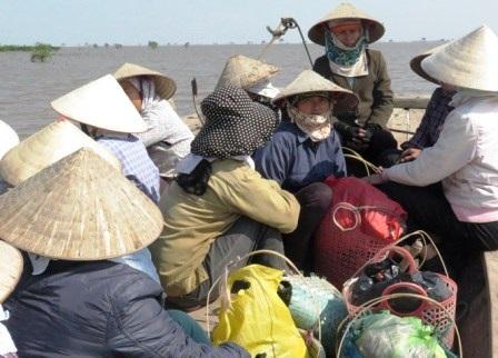 Một thuyền khai thác ngao của người dân Thái Bình.
