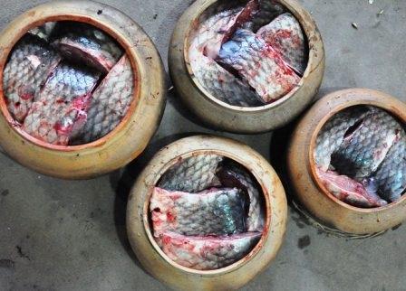 Xếp cá vào niêu được đã được luộc qua để đảm bảo chất lượng,