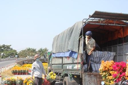 Người dân tất bật chuyện hoa ra chợ những ngày giáp Tết