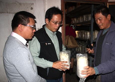 Đoàn doanh nghiệp Đài Loan thăm quan mô hình trồng nấm tại Công ty TNHH Long Hải (Đông Triều.)