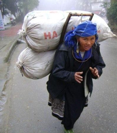 Hàng ngày những phụ nữ người Dao lại lặng lẽ gùi những gùi thuốc xuống bán cho các khách sạn ở Sapa