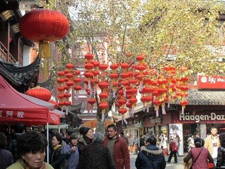 Cây ngô đồng nổi tiếng ở khu vực miếu Hoàng Thành. Trên cây treo đầy đèn lồng đỏ.