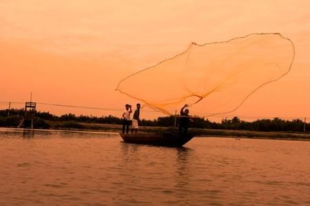 Những vó lưới tung xuống và cất lên trong niềm hân hoan của ngư dân nơi đây giữa dòng Thu Bồn.