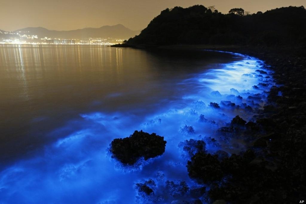Màu xanh kỳ ảo có phần rất bắt mắt tại vùng biển ở Hong Kong