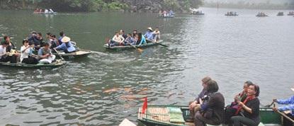 Đàn cá luôn vây quanh mỗi khi du khách đi thuyền đến.