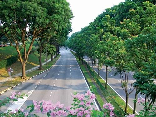 Singapore - quốc đảo xanh